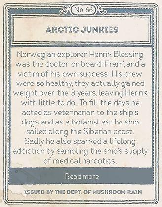 arctic junkies back.jpg
