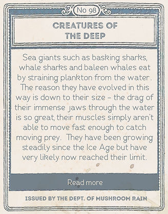 creatures of the deep back.jpg