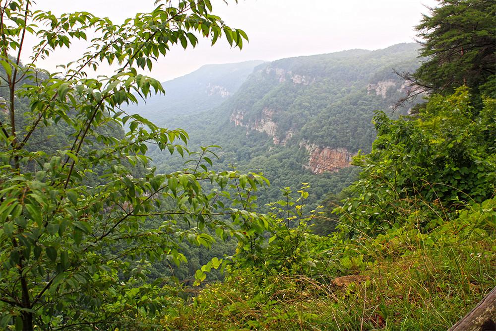 cloudland_canyon_view.jpg