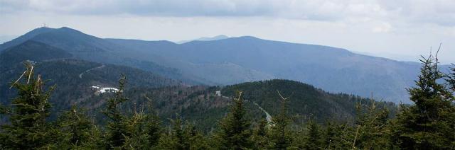 Blue-Ridge-View.preview.jpg
