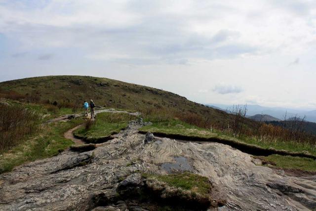 black-balsam-trail-near-top-1200.preview.jpg