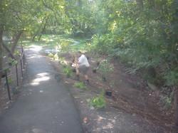 Planting at the Trailhead