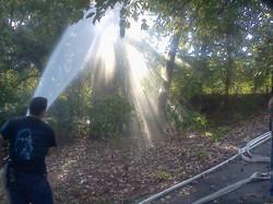 Danbury Fire Dept. watering gardens