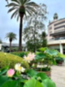 HQ website photo.jpg