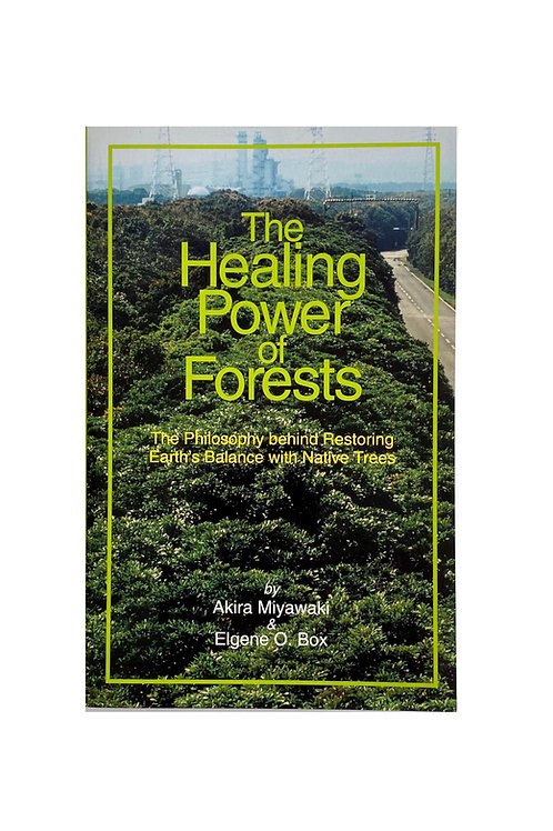 The Healing Power of Forest