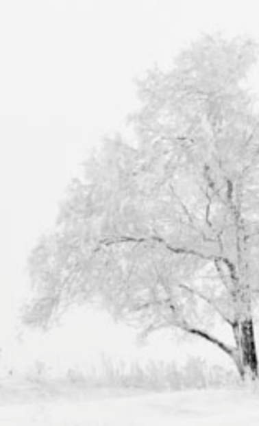 Screen Shot 2015-02-01 at 5.44.34 PM_edi