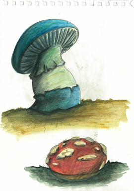 Watercolour-Study on Mushrooms4.jpg