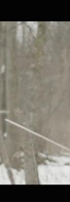 Screen Shot 2015-04-16 at 4.23.53 PM.png