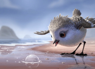 Can the Science of Cute Help  Shorebirds?