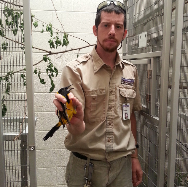 Matt Porter, Detroit Zoo