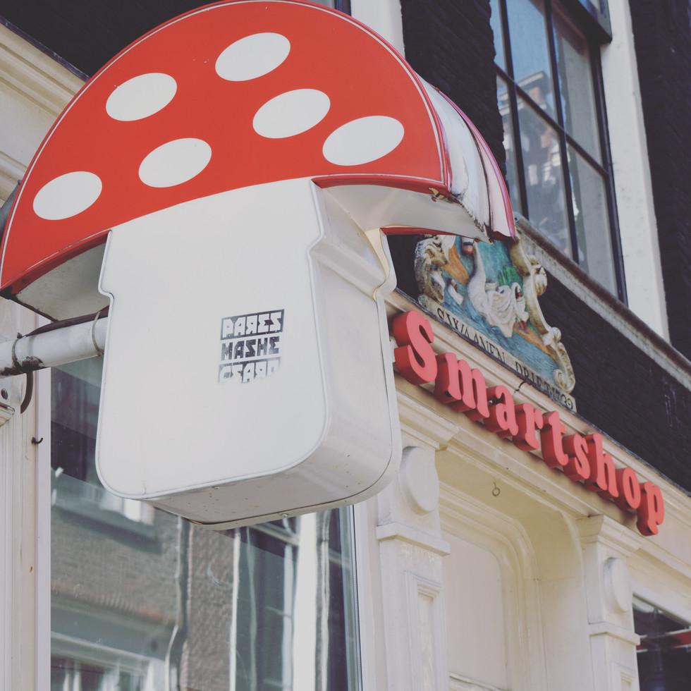 #Amsterdam #MagicMushrooms #Cannabis