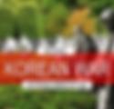 Website & Bulletin Icon - National Korea