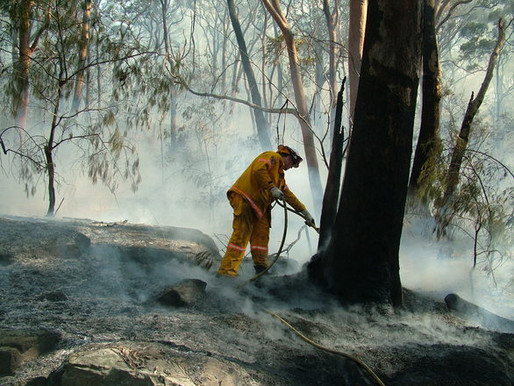 Wye River fires - how proper preparation can save lives