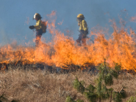 As the Fire Danger increases – are you prepared?