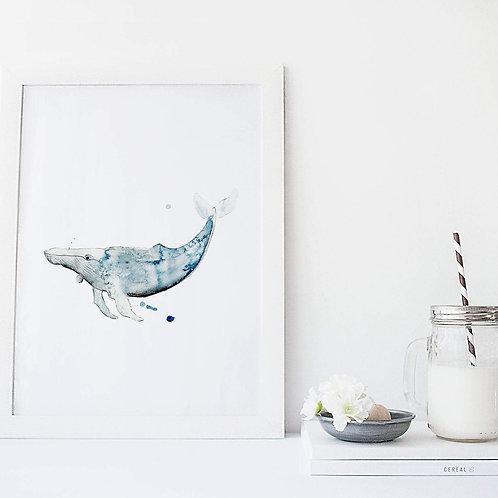 Affiche baleine