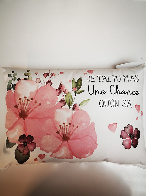 Coussin ''Une chance qu'on s'a''