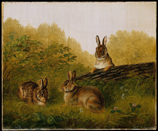 Rabbits on a Log, by Arthur Fitzwilliam Tait (1897)
