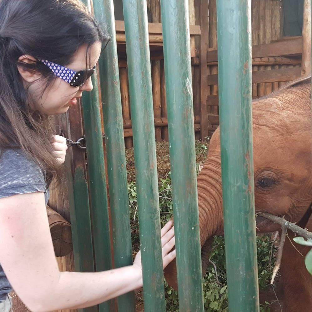 Fulfilling my dream of meeting Ambo, DSWT Nursery, Nairobi, Kenya (Feb 2018)