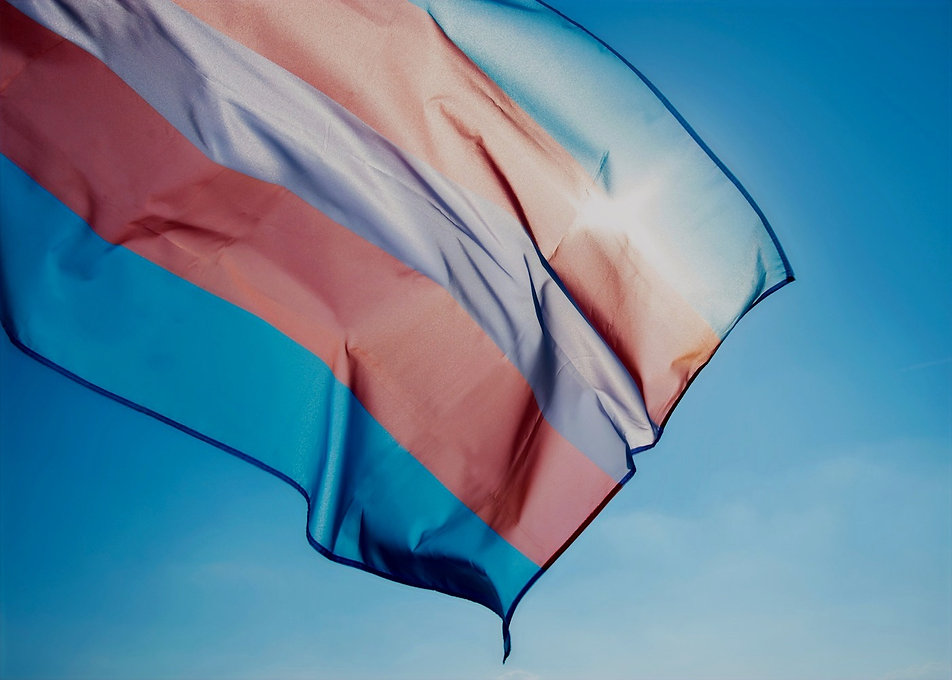 A background banner image showing a transgender flag in the sky.