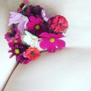 FlowerVulva - 1.jpg