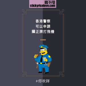 91-hk police-justice-government-law-civil.png