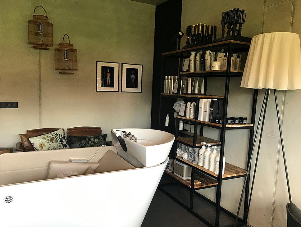 Salon daglicht small.jpg