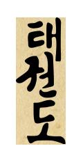 """Taekwondo - """"Każde kopnięcie ma na celu połamanie żeber, wybicie rzepki czy zmiażdżenie kostki"""""""