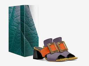 motyl New Road-Bugs-shoes-with_box.jpg