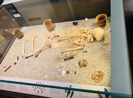 Salisbury Museum Visit