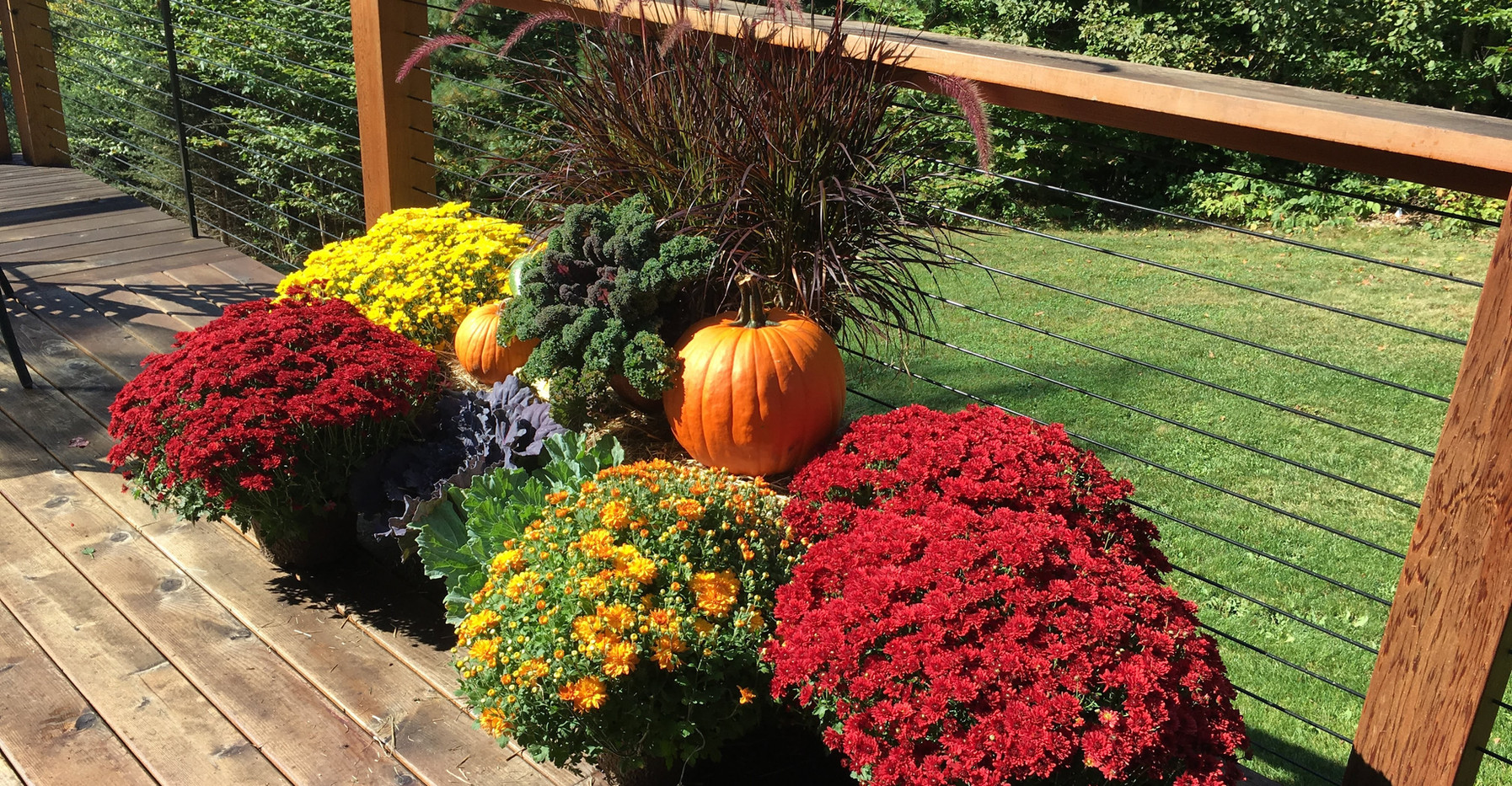 Annuals & Seasonal Decor