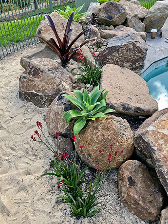 rock solid landscaping pool 3-7.jpg