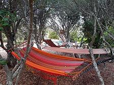 hammocks in the shade.jpg