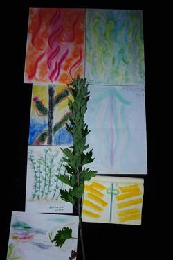 group artemisia drawings