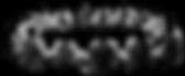 Abozamé asbl | Activités | Causeries