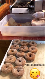 Apple Cider Donuts at Hillcrest Orchards (Ellijay, GA)