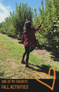 Picking Apples at Hillcrest Orchards (Ellijay, GA)