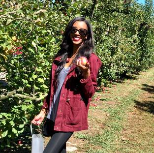 Apple Picking at Hillcrest Orchards (Ellijay, GA)