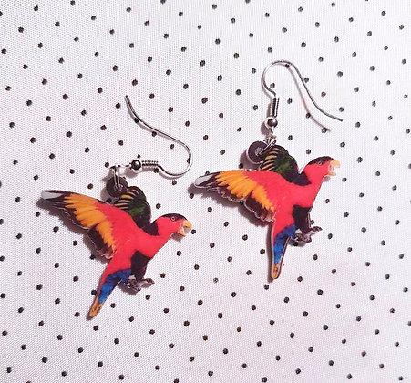 """Boucles d'oreilles """"perroquets rouges"""""""