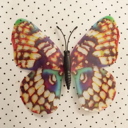 Magnet papillon tigre