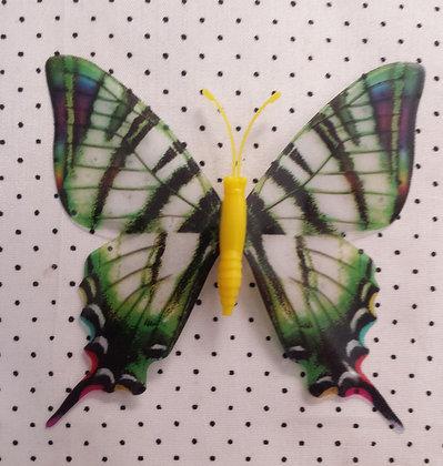 Magnet papillon vert