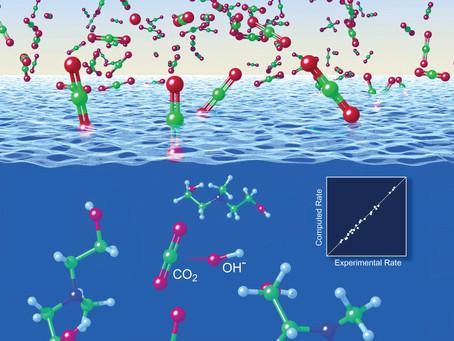 Carbon Capture Clarified