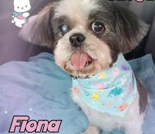 FIONA%20FRIDASY_edited.jpg