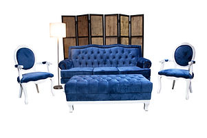Furniture Cover.jpg