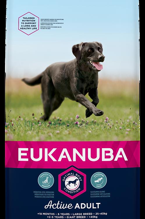 EUKANUBA für aktive ausgewachsene Hunde großer Rassen, mit viel frischem Huhn