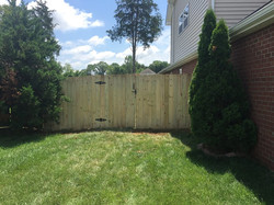 New Fence and Gate - Dog Ear Style