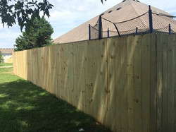 New Fence - Dog Ear Style