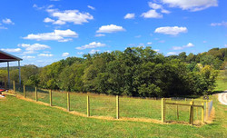 Large 4ft Farm Fence With Wire
