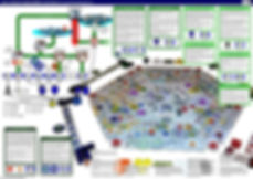 Agile IT service management - ITIL infographic