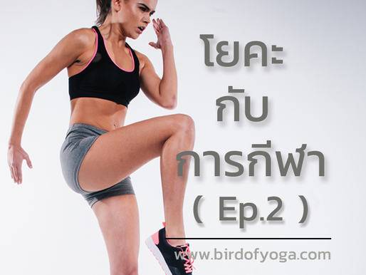 โยคะกับการกีฬา (Yoga and Sport) ตอนที่ 2