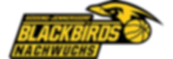 Logo Blackbirds Nachwuchs_NEU_Header_416